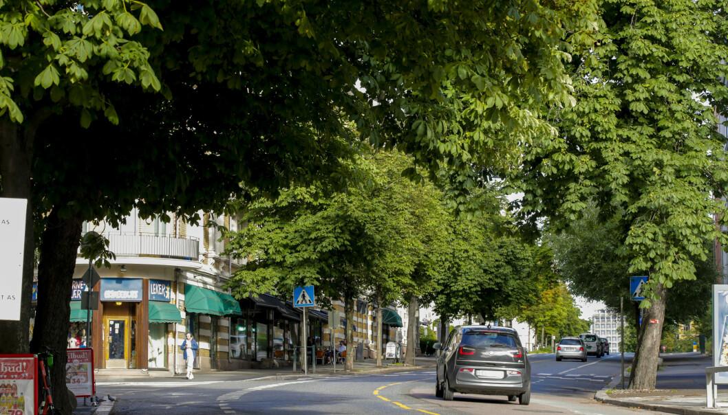 Byrådet i Oslo stenger en strekning av Bygdøy allé for gjennomkjøring frem til august, som et prøveprosjekt.