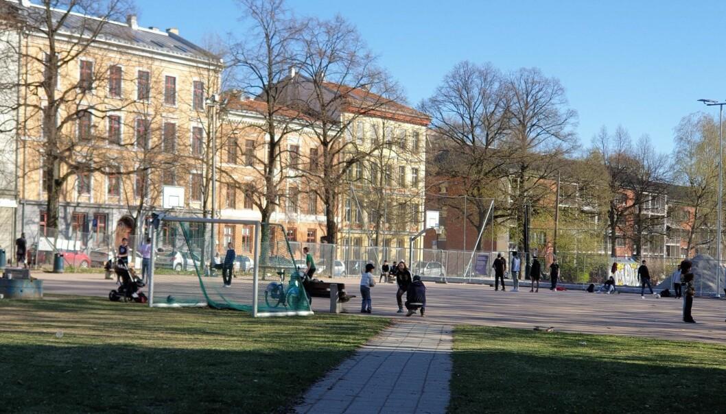 Naboene har fått nok av bråket fra Grünerhagen ballplass, og kommunen håper vektere kan bøte på problemet.