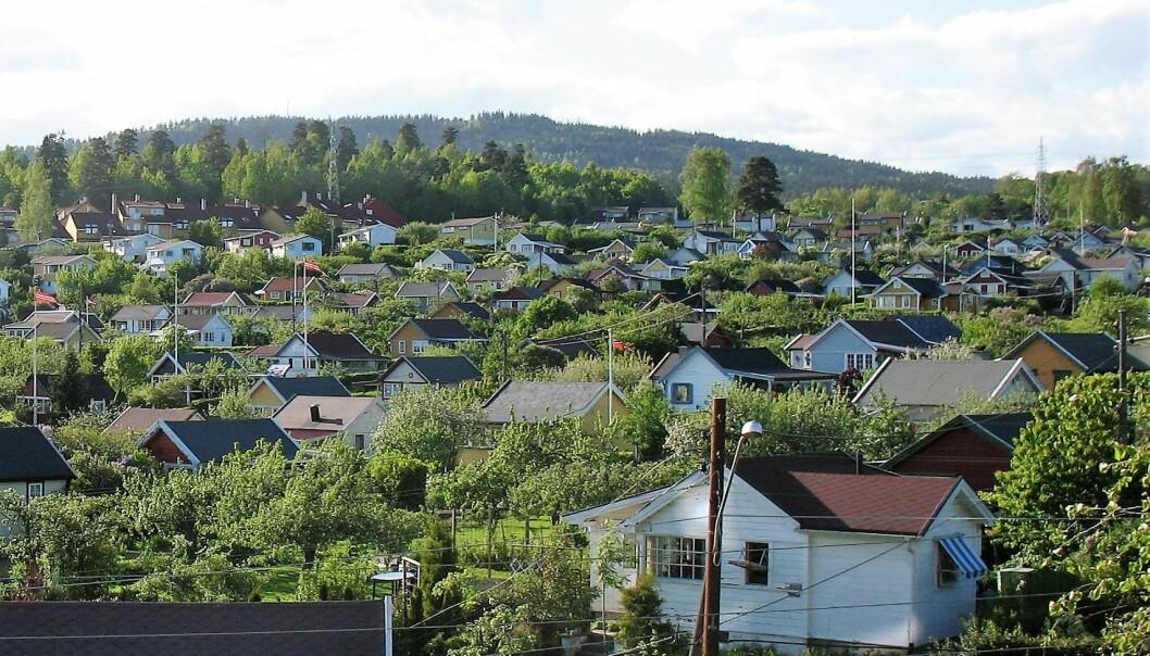 To personer ble utsatt for vold i idylliske Solvang kolonihage.