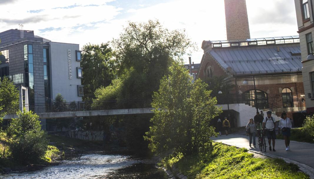 Elvebakken videregående skole er skolen med det høyeste karaktersnittet i byen.