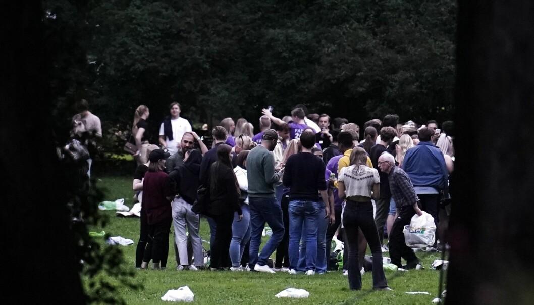 Studenter samlet til fest i Frognerparken mandag kveld. En enslig eldre mann (til h.) samler tomflasker blant de festende studentene.