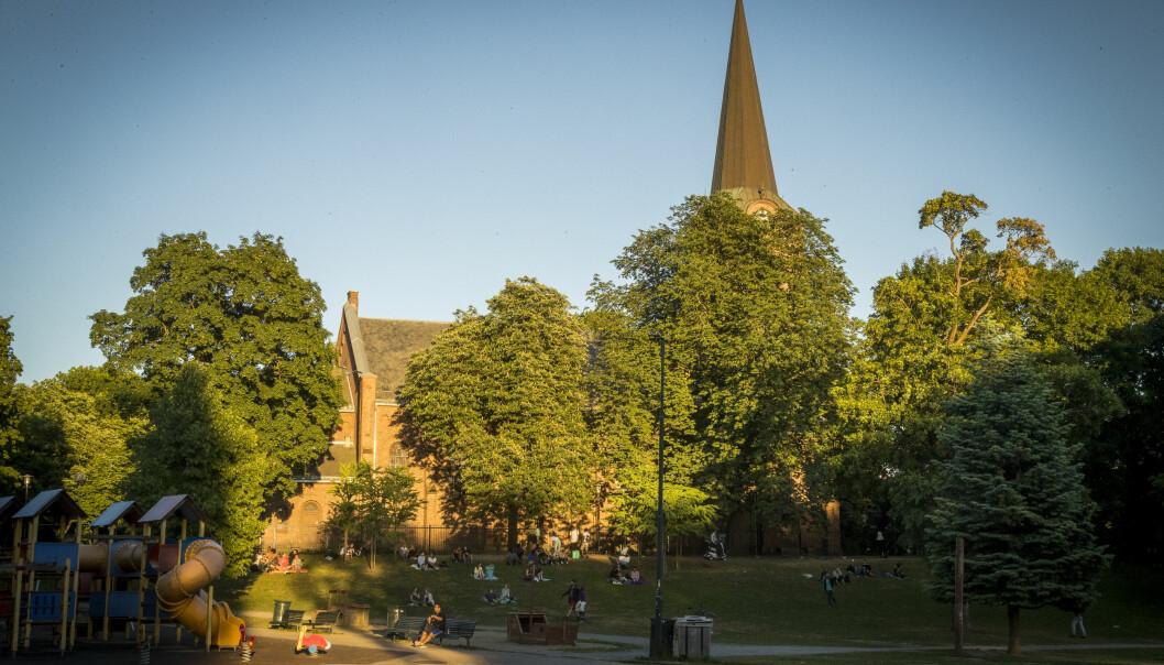 Sofienbergparken er stor og full av mange fine rekreasjons- og lekemuligheter.