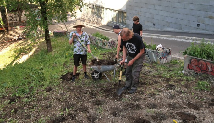 Plantene ble satt i økologisk jord.