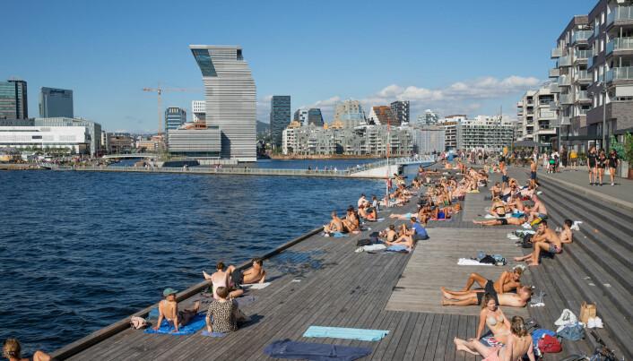 Sørenga er blitt en superpopulært badested for hele byen.