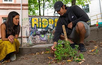 Unge bybønder på Grønland fikk grønt ferdighetsbevis fra byråd Lan Marie Berg