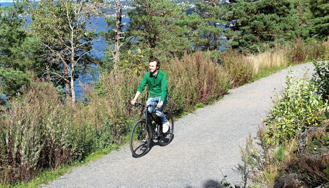 På utsiden av Ljanskollen er det fin utsikt over Oslofjorden.