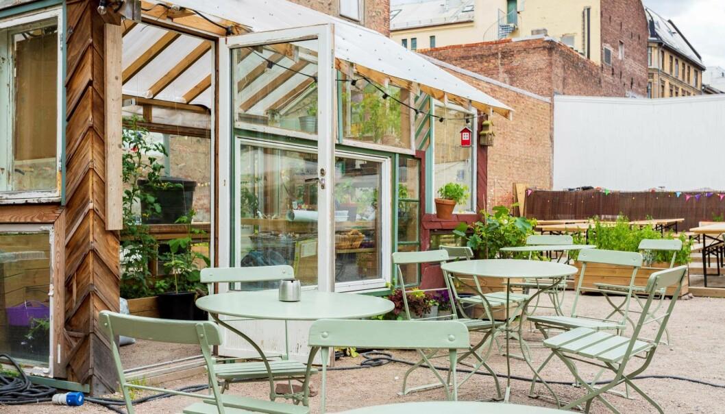 Prindsens hage har drivhus, leker og foodtrucks.