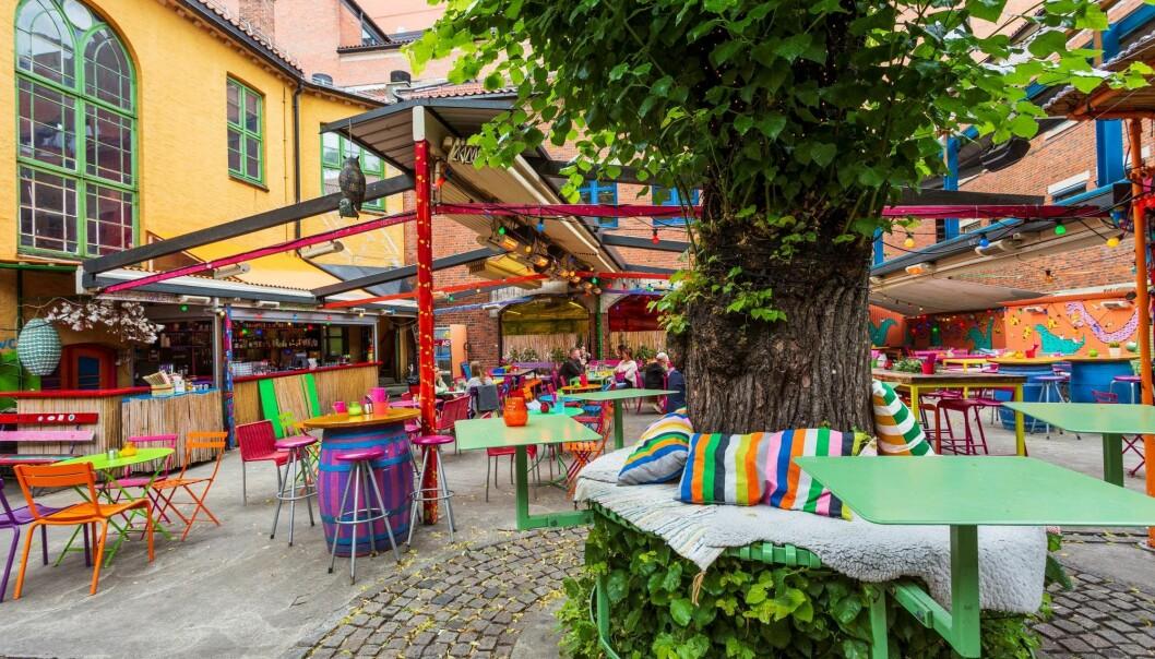Oslo har mange hyggelige bakgårder. Her fra Dattera til hagen på Grønland.