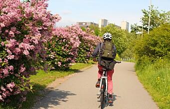 Helgens sykkeltips: Fra Brynseng til Grønland på turveier