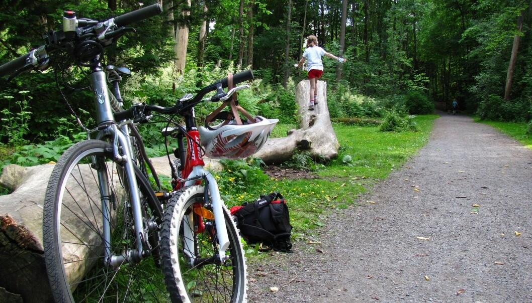 For barna er det flere ting å utforske i Frognerdalen.