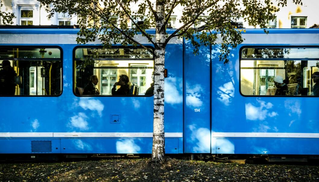 Fire måneder med buss for trikk er over for passasjerer med linjene 11, 12 og 13.