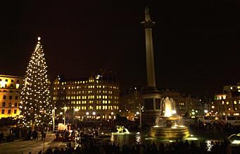 Koronaforviklinger for juletreet fra Oslo til London: - Men det blir tre, forsikrer ordfører Marianne Borgen