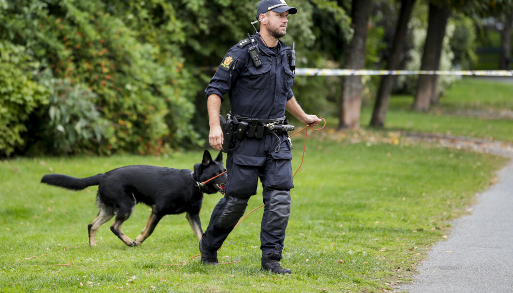 Politiets hundepatrulje i søk etter den antatte gjerningsmannen.