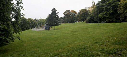 Fire nye områder vurderes som hundeparker i bydel St. Hanshaugen