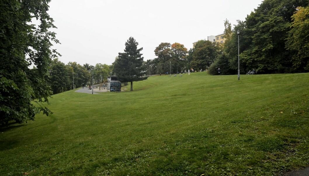 På den grønne plassen ved utgangen av Kjærlighetsstien, også kjent som Egebergløkka, vurderer bydel St. Hanshaugen å opprette et eget område for lufting av bydelens firebente.
