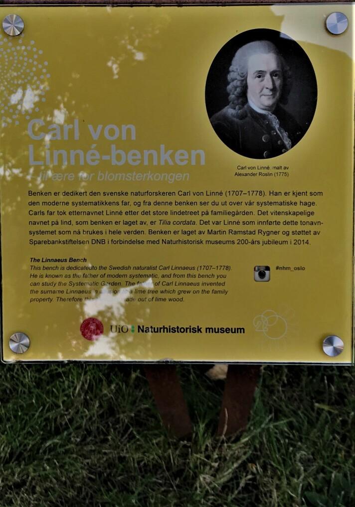 Carl Von Linné laget systemet som klassifiserte planter og dyr. Mindre kjent er det at han også klassifiserte mennesker etter hudfarge.