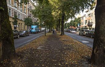 Starter prøvegraving i Gyldenløves gate neste uke. Så anlegges de omstridte sykkelveiene på Frogner
