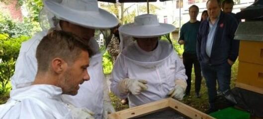 Jobben i Gamlebyen vant medalje i honning-NM andre året på rad