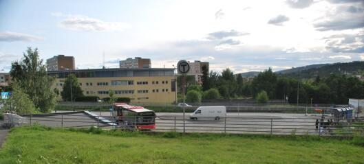 – Naturområdene i Oslo bygges ned bit for bit. Og det er vanskelig for oss politikere å stå imot