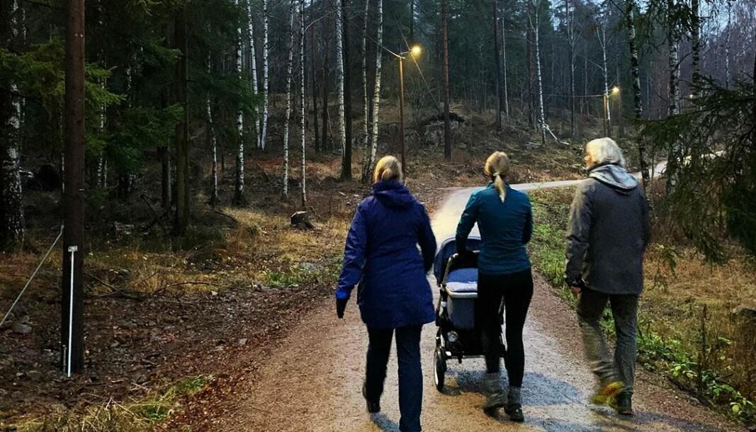 En flunkende ny lysløype står nå ferdig i Nordmarka. Lysløypa er ca. 3 km lang og går fra Sognsvann til Korsvoll.