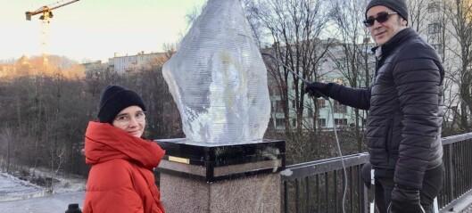 Pengemangel og pøbelstreker skaper usikkerhet og trøbbel for kunstprosjekt på Bentsebrua