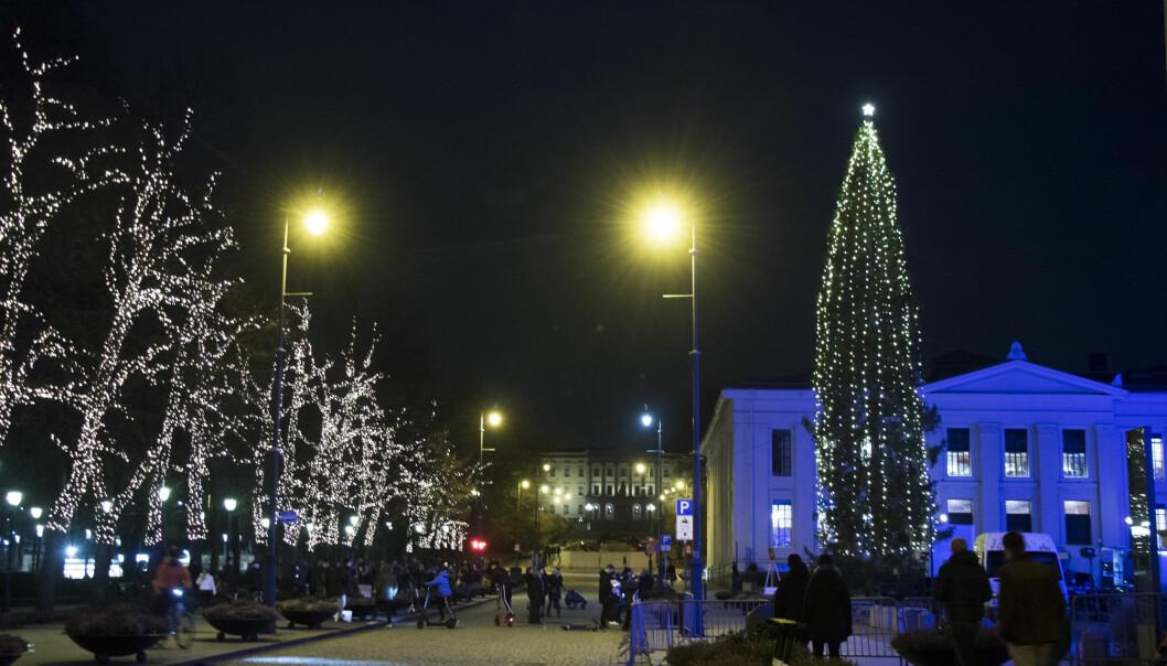 Oslos paradegate Karl Johan med lys i trærne og et opplyst juletre på Universitetsplassen, med Slottet i bakgrunnen.