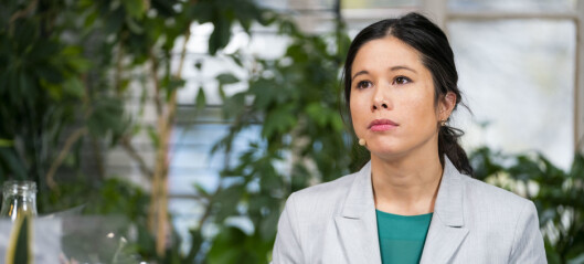 Lan Marie Berg: Stortingets tunnelplan for E6 i Oslo er en «krigserklæring»