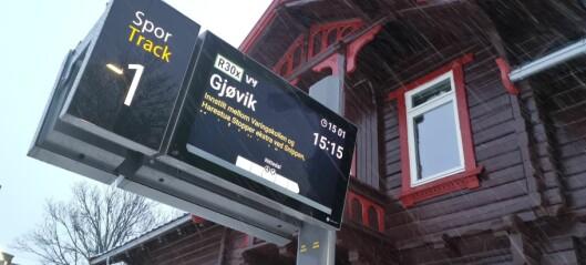 Tre over linja førte til stans for Gjøvikbanen til og fra Oslo. Også på veiene skaper trær problemer