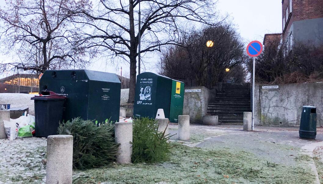 Glasscontaineren bak de uavhentete juletrærne i krysset Fagerborggata og Gørbitzgate bar preg av nyttårshelgen.