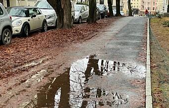 Løvet fra i høst er blitt til sleip gjørme i Frogner-gatene. Slik blir det uten rengjøring. Se bildene