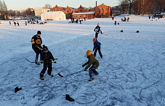 Slik så det ut i vinter-Oslo i helga. Her fra Ola Narr og Vannspeilet i Middelalderparken