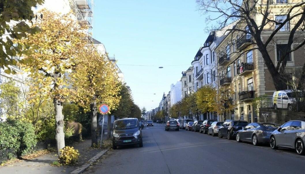 Idylliske Skovveien vil bli helt rasert om Ruters planer om flytting av Briskebytrikken blir vedtatt av bystyret, mener Skovveien-beboere.