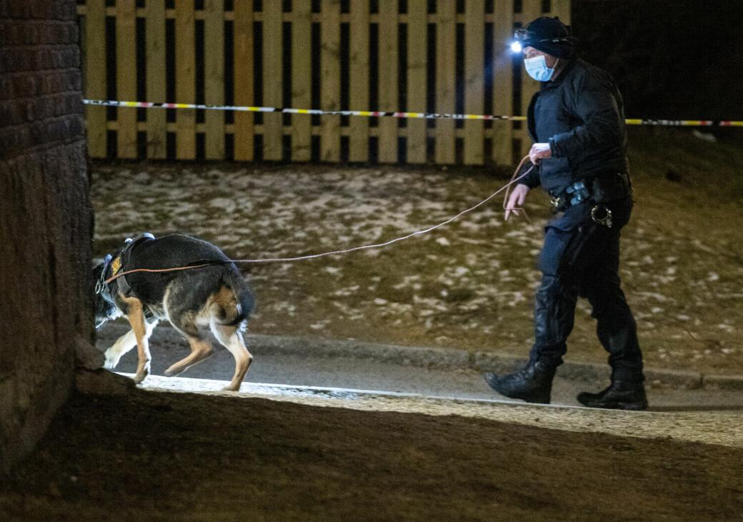 Skuddofferet ble funnet inne i en leilighet i Ålesundgata. Men store politistyrker, blant annet med hunder, gjør søke etter spor og mistenkte i nærområdet på Bjølsen.