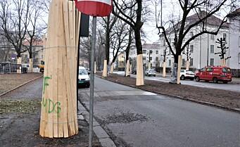 Alt klart for anleggsmaskiner i Gyldenløves gate: - Vær forberedt på støy, advarer bymiljøetaten