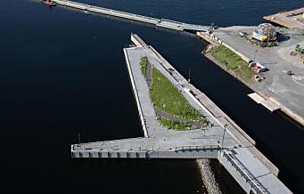 Halvøya utenfor Munchmuseet åpnes for oslofolk nå på fredag. Men skulpturen The Mother er forsinket