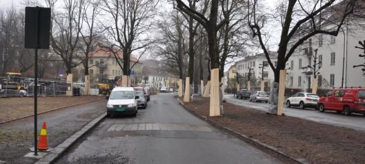 Frogner-aktivister gir ikke opp. Går til Sivilombudet for å stanse sykkelvei i Gyldenløves gate