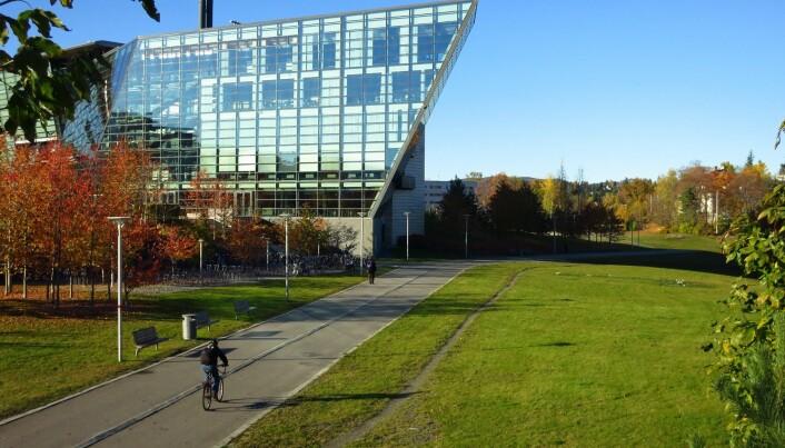 Runden har noen av Oslo-områdets flotteste sykkelveier, her fra strekket litt nord for Rolfsbukta.