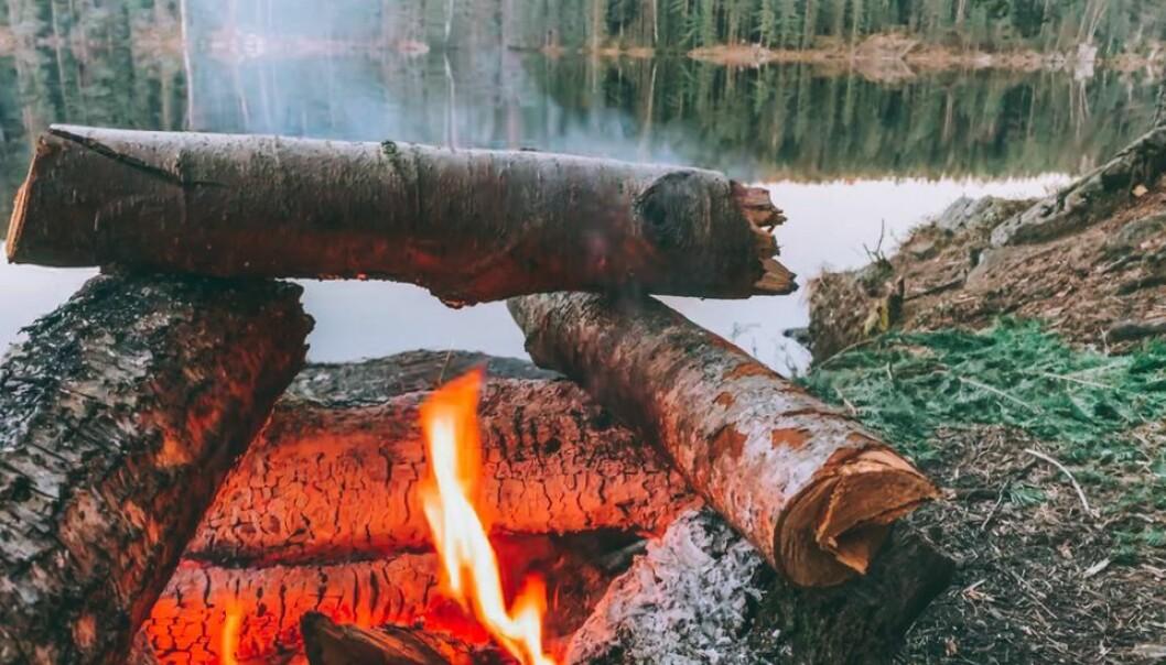 Det generelle bålforbudet er laget for å forhindre store branner i en periode av året der faren for gress- og skogbranner er stor.