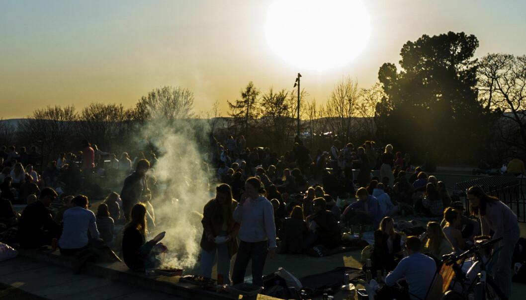 Bildet er fra St. Hanshaugen lørdag kveld for en uke siden. Natt til søndag denne helgen var det trolig enda flere på fest i parken.