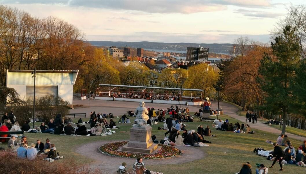 Slik så det ut nesten øverst på St. Hanshaugen tidlig på lørdagkvelden denne helgen.