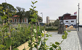 Navnemysteriet på Akershusstranda: Navnet Gasteparken har bare «levd videre» etter åpningen