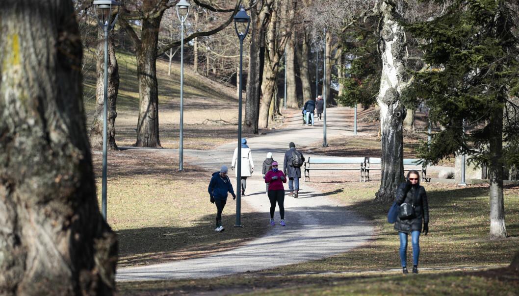 I gater nær parken på St. Hanshaugen sparket en mann i tjueårene vekk sidespeilene på flere biler.