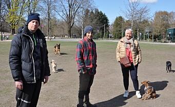 Hundejordet i Frognerparken må vike for Fornebubanen: - Her har jeg luftet hunder i 28 år, sier Kirsti
