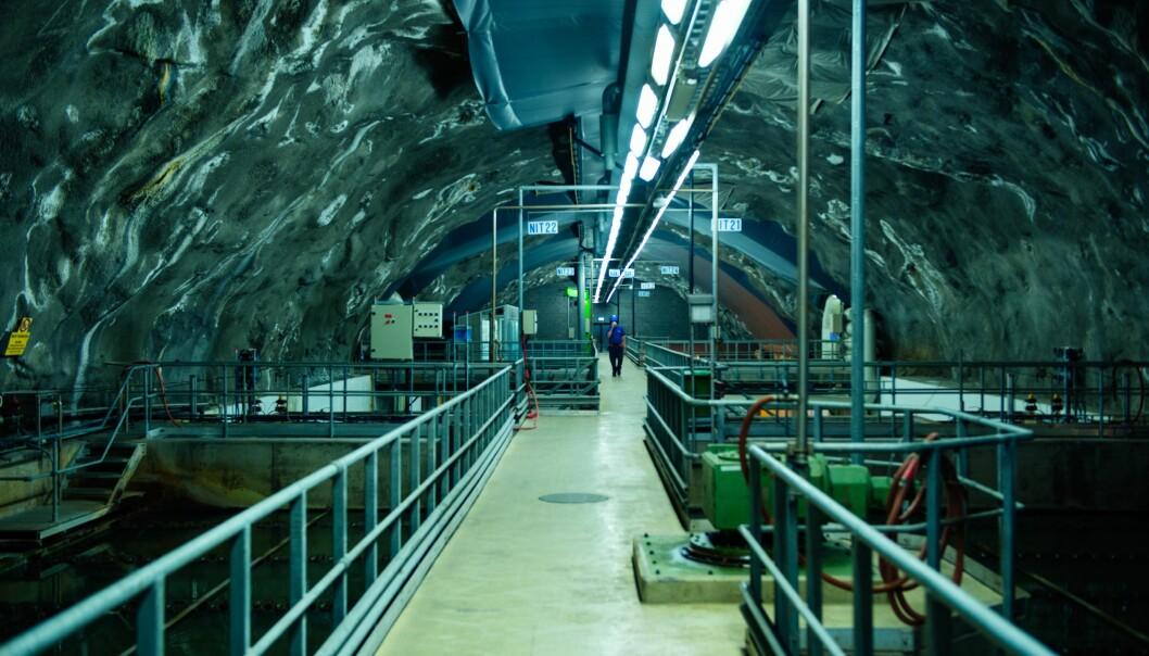 Fra denne fjellhallen lakk det 18 millioner liter kloakk ut i Indre Oslofjord.