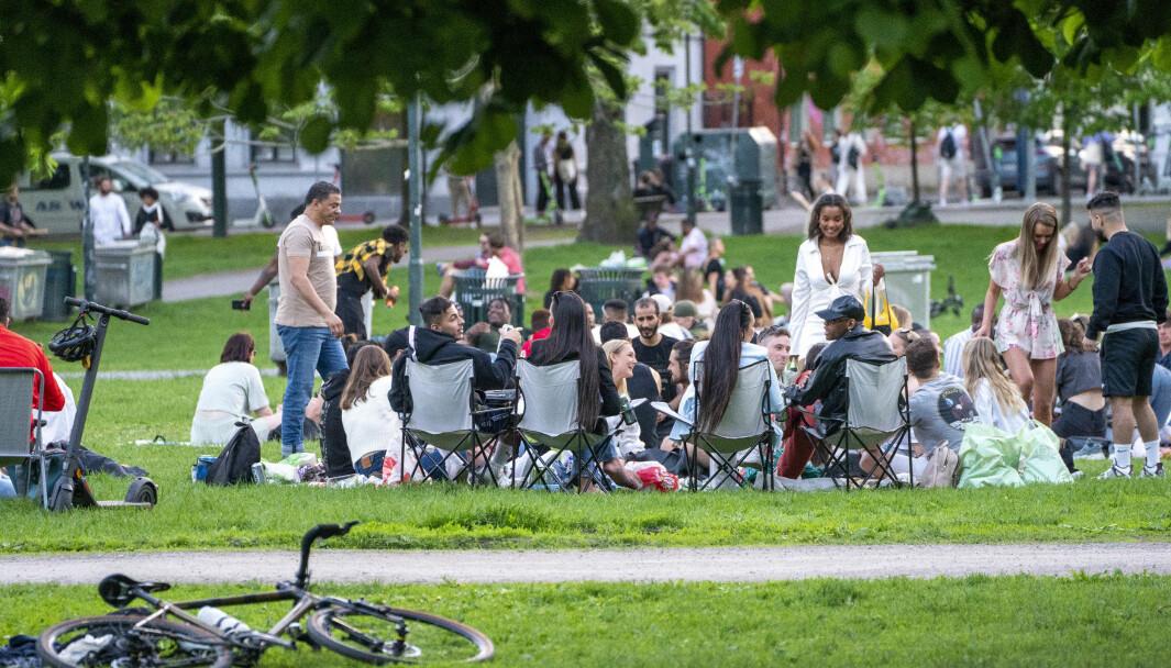Folk sitter pent og pyntelig i kohorter og koser seg i Sofienbergparken fredag kveld, melder NTB. Foto: Terje Pedersen / NTB