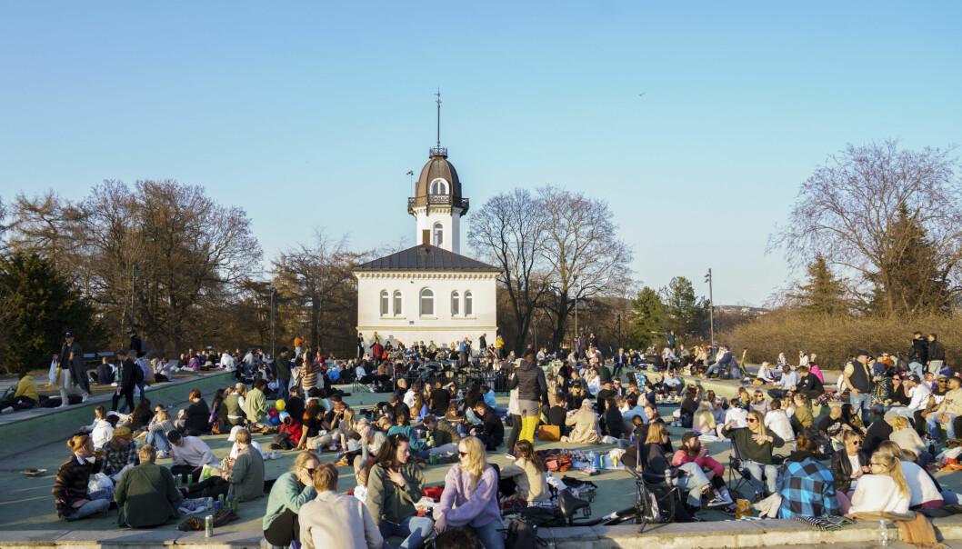 Tusenvis kom sammen på St. Hanshaugen, natt til søndag. Her fra april.