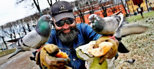 Gamle Oslo SV vil innskrenke folks mulighet til å mate byduene. — Matingen begynner å bli et folkehelseproblem