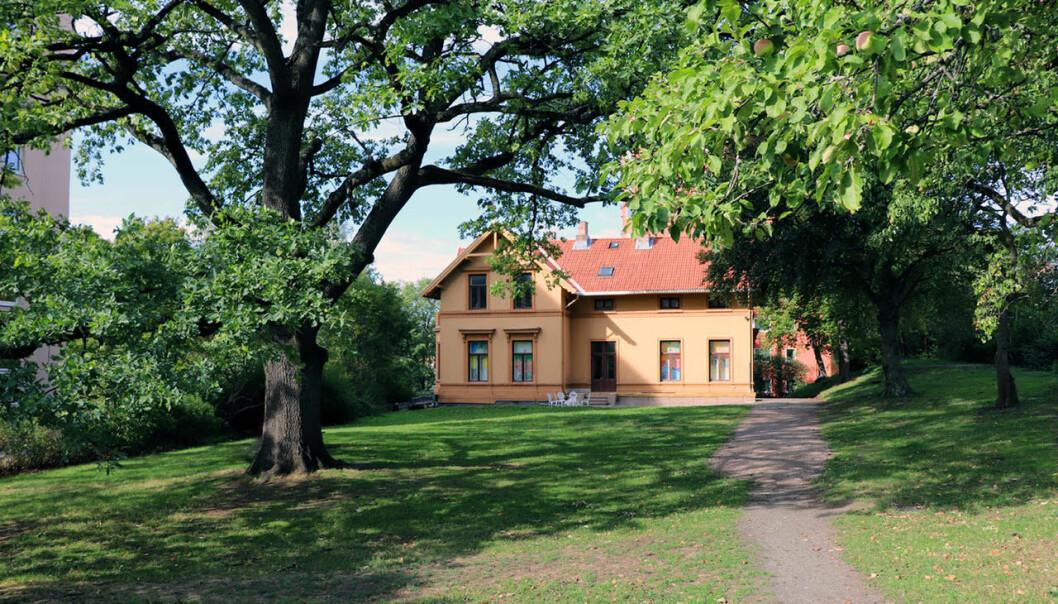 Gamle Villa Furulund ligger rett overfor det travle krysset på Carl Berner. Omkranset av en vakker, frodig liten park hvor det til vanlig står utplassert mange fine skulpturer.