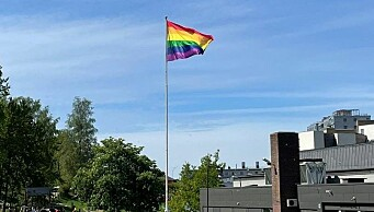 Byråd Rina Mariann Hansen: — Et angrep på prideflagget er et angrep på våre innbyggere