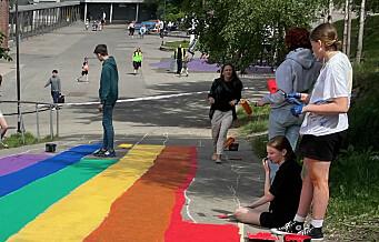 Da Britt sto og heiste Pride-flagget for fjerde gang, fikk hun ideen om regnbueveien